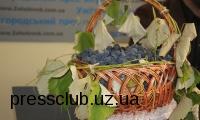 7-8 жовтня Мукачівщина проведе етнофестиваль «Бобовищенське гроно»
